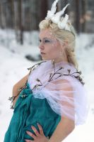 Ice Queen - stock 1 by Mirish