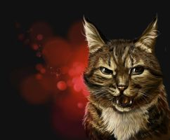 Angry cat by SalamanDra-S
