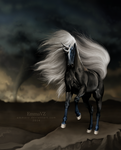 Like the Storm by EmmaVZ