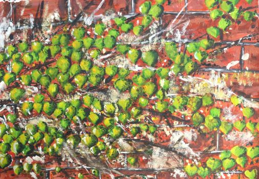 Vine on wall detail by phuonghn