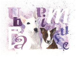Ubba and Pimousse by saraquarelle