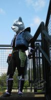 Wolf - On the Steps by furinchime