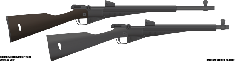 National Service Carbine by Wolohan2011