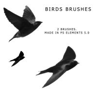 Birds Brush 2 by sd-stock