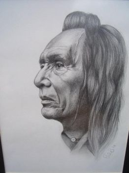Indian Chief by palart