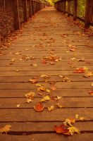 fall is nostalgia 2 by Sungreenandtangerine