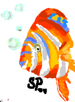 Fish by SWPX