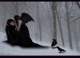 Wings of Raven by christel-b