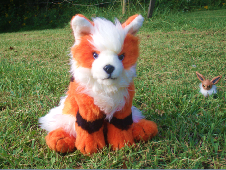 My Arcanine by Skeleion