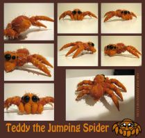 Teddy the Jumping Spider by Ink--It
