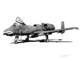 A-10A Thunderbolt II by Sketchh22