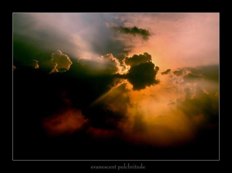 Evanescent Pulchritude by Bachlakoff