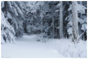 White. by FlorentCourty