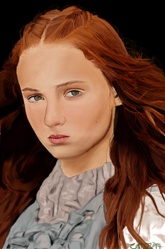 Sansa Stark by marvellous-monkey