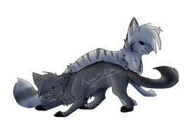 Graystripe and Silverstream by Kiwi513