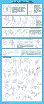 Hand Tutorial -Tips+Reference- by Qinni