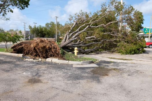 Irma just a few blocks from where we live by Inoeletrof