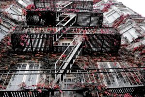 Fire Escape by Thorvold