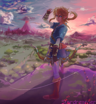Link // Breath of the wild by sosokrazy
