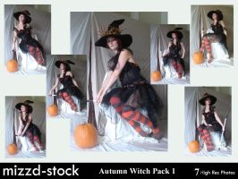 Autumn Witch Pack 1 by mizzd-stock