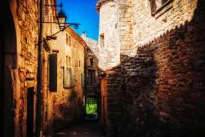 The old gate by calimer00