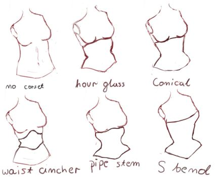 Types of corsets by wallakitty