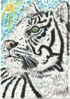 White Tiger  watercolor ACEO painting by tulipteardrops