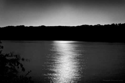 Moonlight by RLiggett