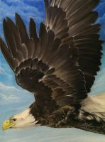 Upon Wings of Eagles by SkiAr7sy