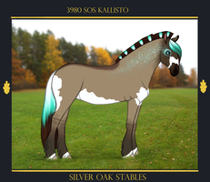 3980 SOS Kallisto by SilveringOak