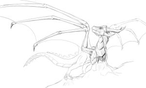 Dragon Sketch_WIP by Tsitra360