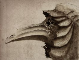 Weathered Plague Doctor by Scklyic