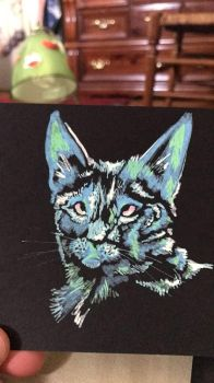 Cat done with Paint Pens by Starquilled