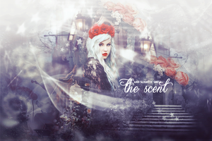 The Scent by ParkHyoJin