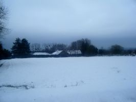 Countryside in the snow by Cansounofargentina
