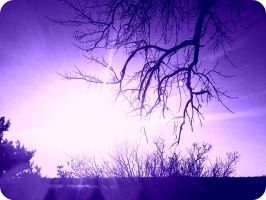 i've always wished the sky was purple. by JMS296