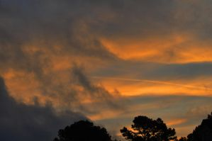 Sunrise 2 1-1-11 by Tailgun2009