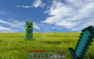 Minecraft by enmortem