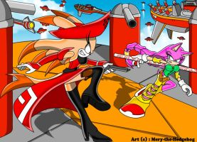 :CE: Fight in the Egg Fleet by Mery-the-Hedgehog